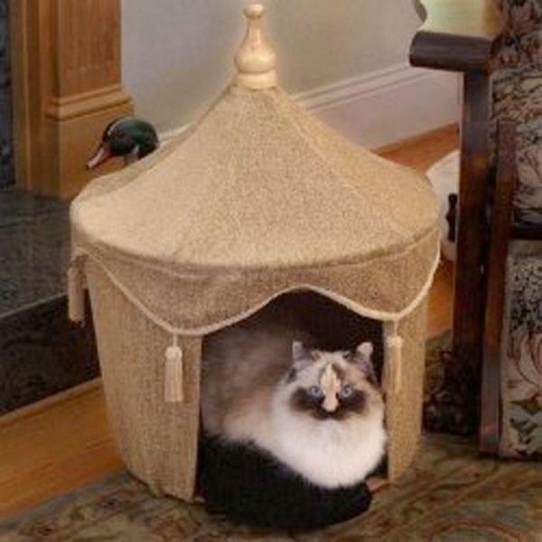 Сделать кошке дом из