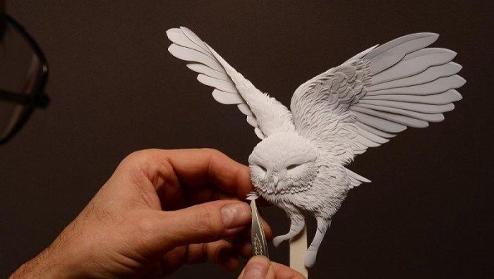 Реалистичные скульптуры животных из бумаги (11 фото)
